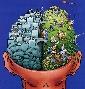 Administración del conocimiento I